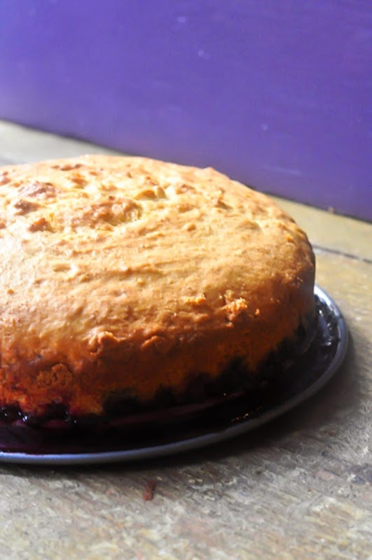 ricotta_cake-10LR