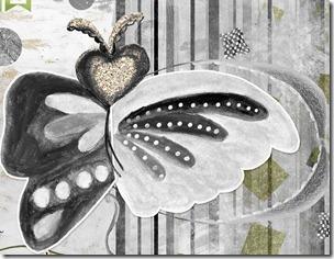 farfalla dettaglio