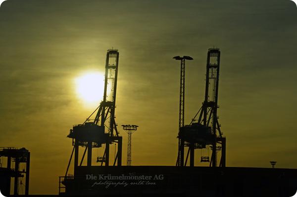 Bremerhavenrundfahrt 261113 (13)