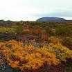 Islandia_156.jpg