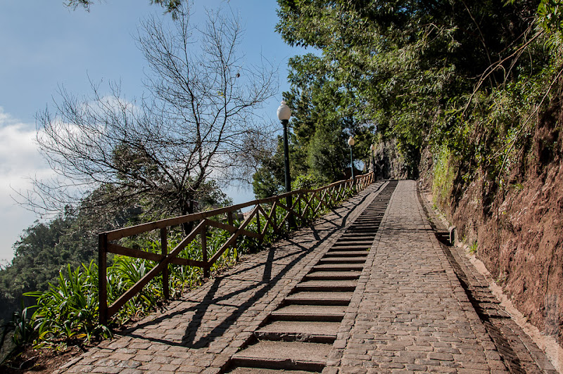 115. Февраль. Мадейра. Канатная дорога. Фуншал. Очень живописно смотрится лесенка к станции первого подъёма и ботаническому саду.