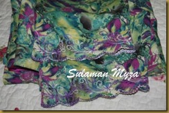 Sulaman 6.7.2011 002