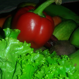 Salad by Shahed Arefeen - Food & Drink Fruits & Vegetables ( salad, food and drink, lettuce, capsicum, fruits and vegetables )
