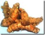 fungisida-organik