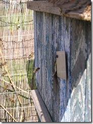 Přítel včelař Dostal UNO30,4,2012 030