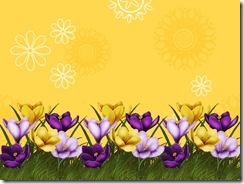 flower-border-backgrounds-wallpapers