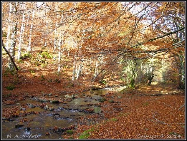 Lantz otoño 086