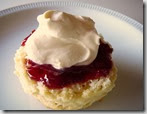 Scone biscuit