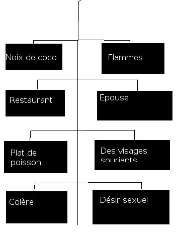 interpretation-reve-islam-arbre-mots