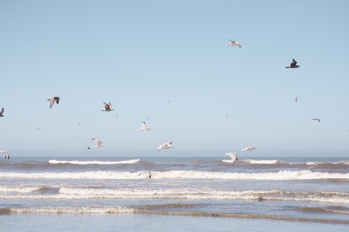 Beach6