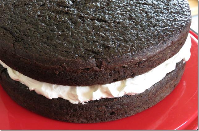 Tuxedo Cake 4