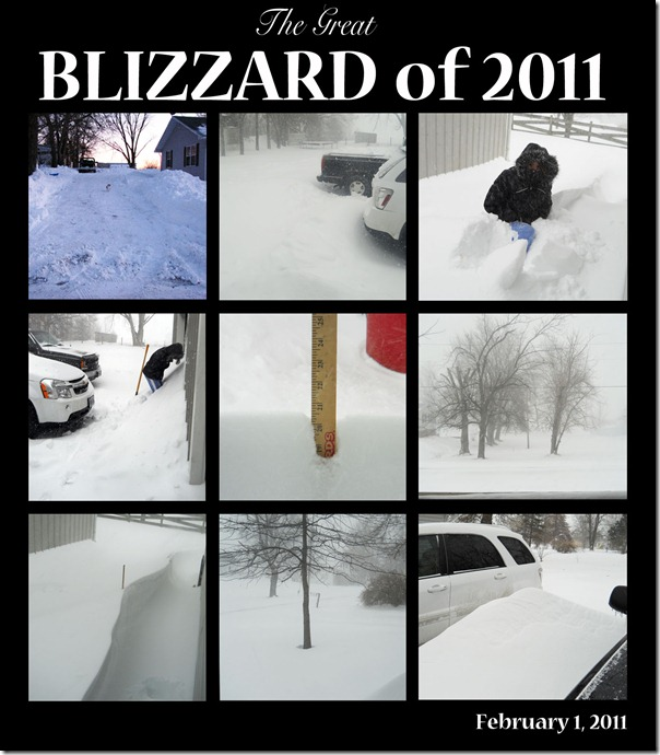 blizzard 2011 collage