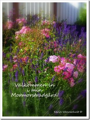 Karins Mormorsträdgård