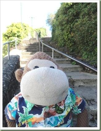 Steps in Brixham