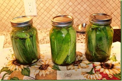 Pickles 017