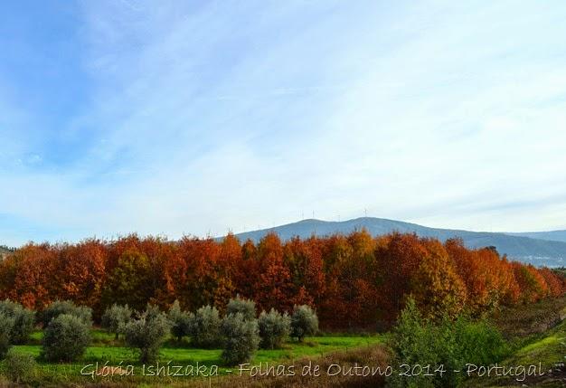 Glória Ishizaka - Folhas de Outono 12