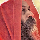 13.Waves Of Love - osho429.jpg