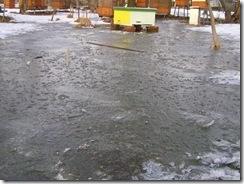 potopa včeliček 20,02,2012 026