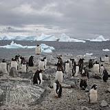 Antarctica II
