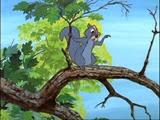 12 Merlin en écureuil