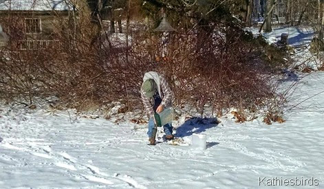 7. filling feeders before the storm 1-25-15