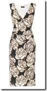 Phase Eight Print Dress
