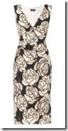 Phase Eight Print Dress