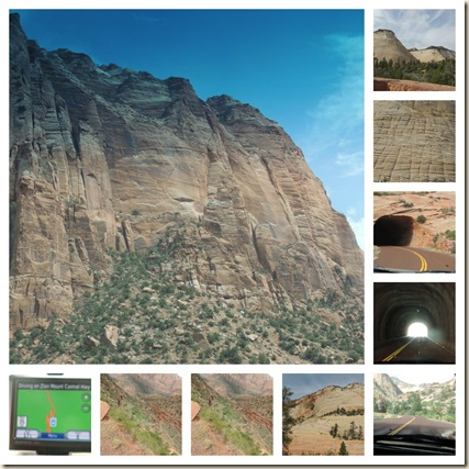 Zion collage