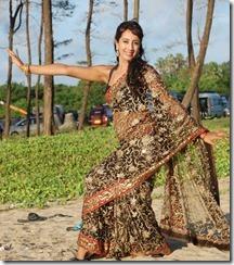 Actress Sanjana Hot Saree Stills