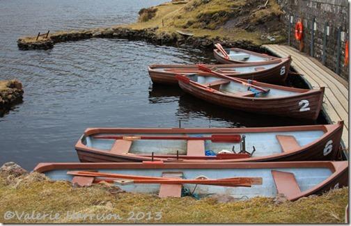 36-mini-harbour-loganlea