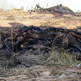 Burned out area shows lots more fire fuel, before  controled by fire fighters