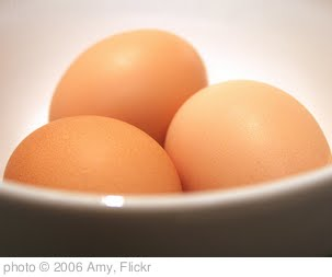 'Eggbowl' photo (c) 2006, Amy - license: http://creativecommons.org/licenses/by-nd/2.0/
