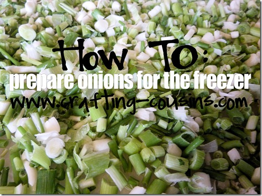 How to prepare green onions for the freezer.  Tips from the Crafty Cousins.