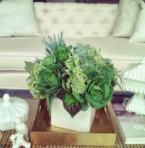 green 1003527_10151768842149144_60635077_n tulip