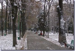 Bishkek_winter_street