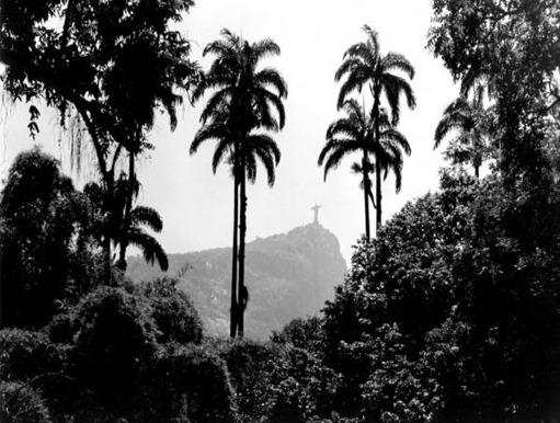 1-jardim-botanico--rio-de-janeiro-eduardo-costa
