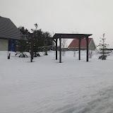 庭の雪も急に減りました