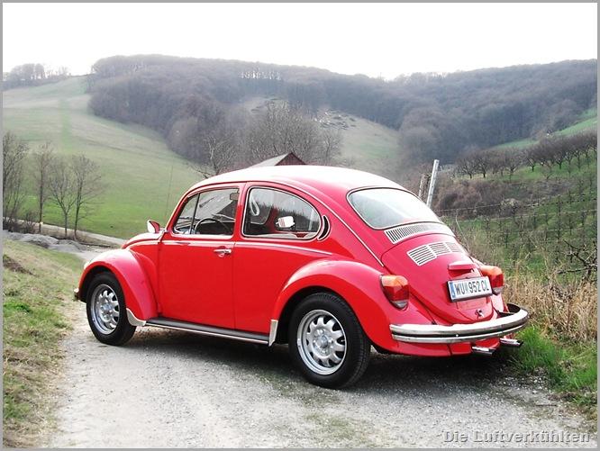 Roter Käfer 6