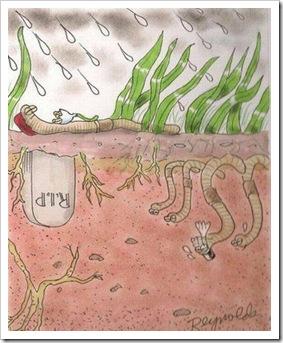 enterro-de-minhoca