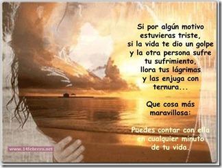 14febreroesto es amor (7)