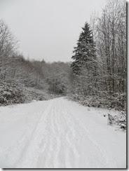snowy Saturday 02