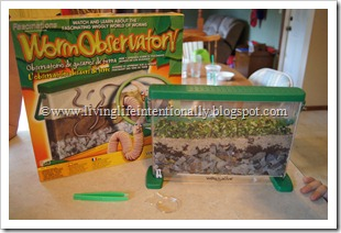 Worm Observatory - Science FUn for Preschoolers