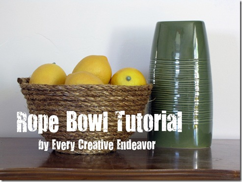 Every Creative Endeavor - Rope Bowl