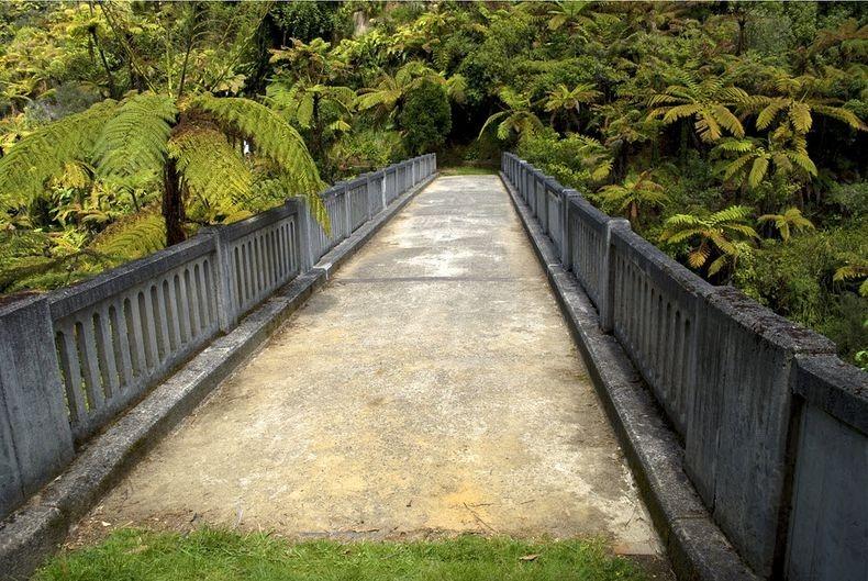 whanganui-bridge-nowhere-3