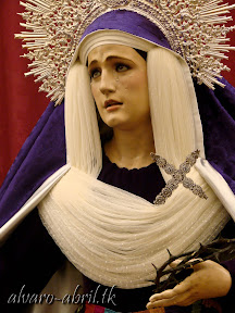 rosario-de-linares-hebrea-2014-(6).jpg