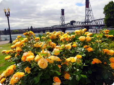 bridge and roses
