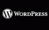 Wordpress category slug