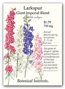 larkspur-giant-imperial_lg[1]