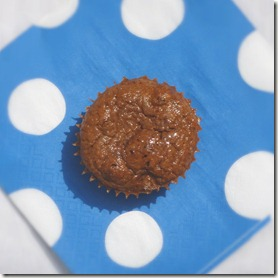 carrot cake protein muffin 2