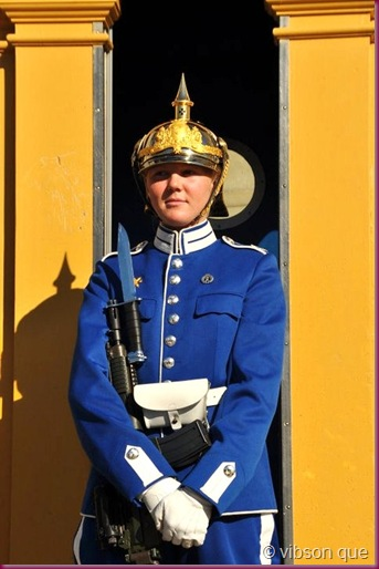royal guard stockholm
